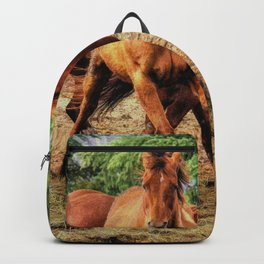Horse Play Backpack