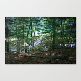 Early Morning Mist Canvas Print