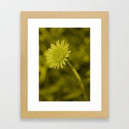 Dandelion tint Framed Art Print