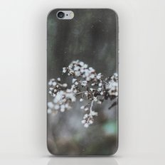 Cold Flower iPhone & iPod Skin