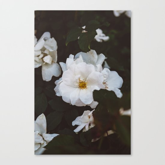 Soho Blooms Canvas Print