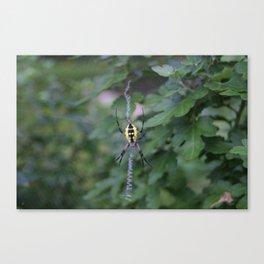 Web highlight! Canvas Print