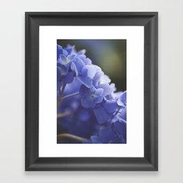 Pretty in Purple Framed Art Print