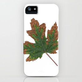 October Specimen iPhone Case