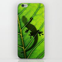 lizard iPhone & iPod Skins featuring Lizard by Nicklas Gustafsson