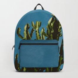 Cactus Sky Backpack