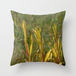 Divergent Grass Throw Pillow