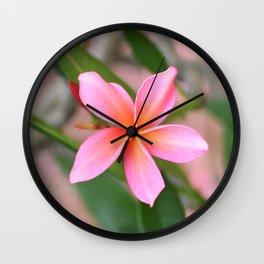 Blushing Plumeria Wall Clock