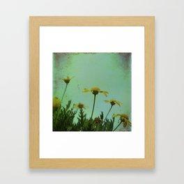 Fragile Flowers Framed Art Print