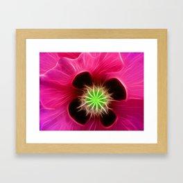 Fushia Poppy Framed Art Print