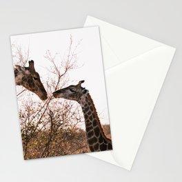 Giraffes, South Africa, Kruger National Park    African wildlife, Art Print Stationery Cards