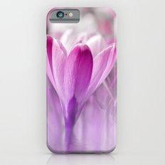 Crocus Flowers Pink 117 iPhone 6s Slim Case