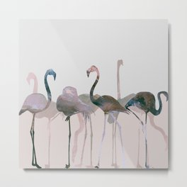 New Flamingos Metal Print