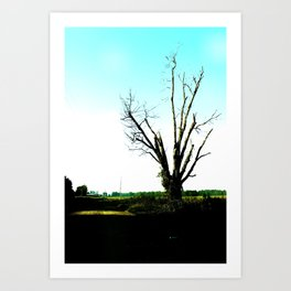 not a pretty tree 2 Art Print