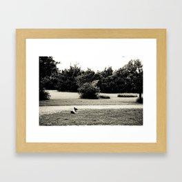 Pippin Framed Art Print
