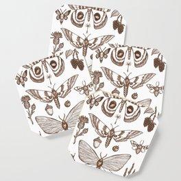 Natural History (Brown) Coaster