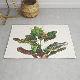 Croton Rug