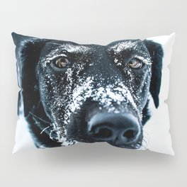 Snow Dog // Cross Country Skiing Black and White Animal Photography Winter Puppy Ice Fur Pillow Sham