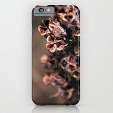 Dry live Slim Case iPhone 6s