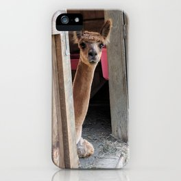 Why Hello! iPhone Case