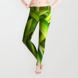 Spider Plant Leaves Leggings
