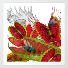 Beautiful And Deadly Art Print