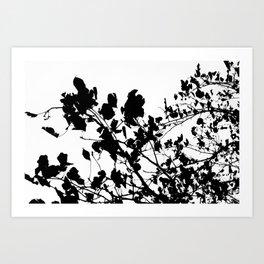 Monochromatic Leaves Art Print