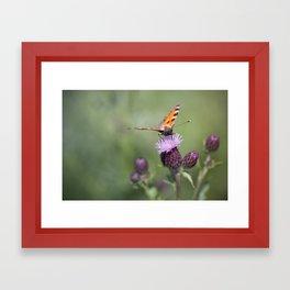 Wonderful world.... Framed Art Print