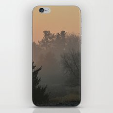 Before the Snows iPhone & iPod Skin