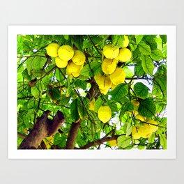 when life gives you lemons... Art Print