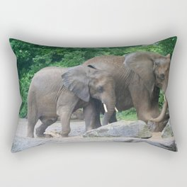 Mud Bath Rectangular Pillow