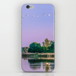 Swans are flying iPhone Skin