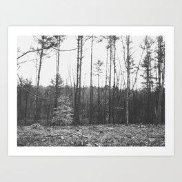 Autumn 9 Art Print