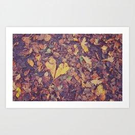 Love in Autumn Time Art Print