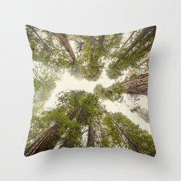 Into the Mist - Nature Photography Throw Pillow