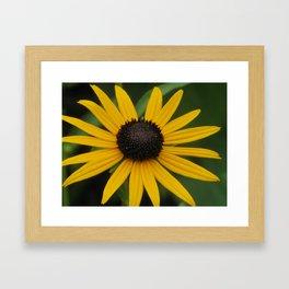 k12 Framed Art Print