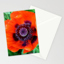 Red Poppy Stationery Cards