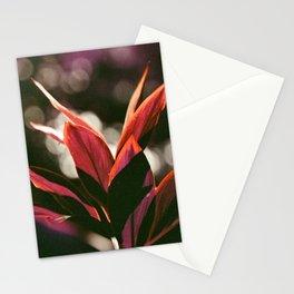 Hawaiian Plant Stationery Cards