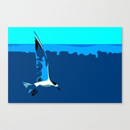 Tropical Tern (Sandwich Tern) - Seychelles Canvas Print
