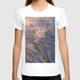 tree in spring and cloudy sky T-shirt