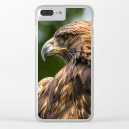 Golden Eagle (aquila chrysaetos) - Utah Clear iPhone Case