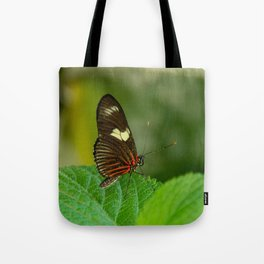 Doris Longwing Butterfly Tote Bag