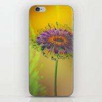good morning iPhone & iPod Skins featuring Good Morning! by Klara Acel