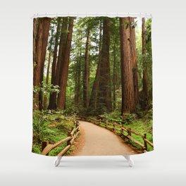 Walking Through The Muir Woods Shower Curtain