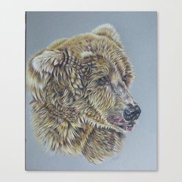 Otis, Golden Bear Canvas Print