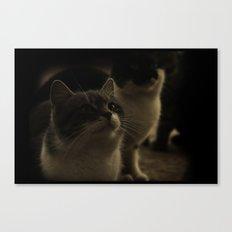 Kitty Katz Canvas Print
