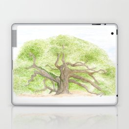 Angel Oak Laptop & iPad Skin