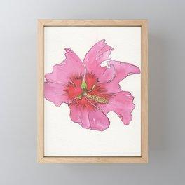 Rose of Sharon Framed Mini Art Print