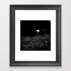 THE LAST FLOWER Framed Art Print
