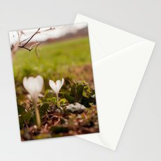 on the ground Stationery Cards